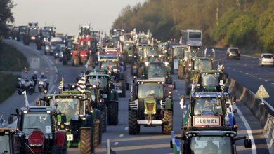Fıransız çiftçiler