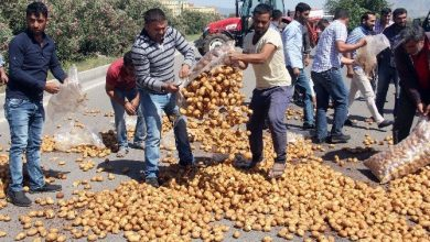 adanada ciftciler fiyatlara tepki olarak d 400 karayoluna patates 002
