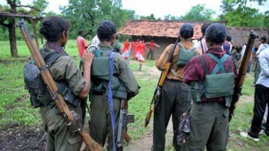 istihbarat maoistler icin rapor hazirladi
