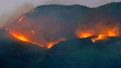 dersim de orman yangınları sürüyor