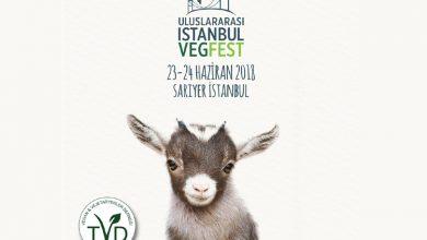 Uluslararası İstanbul VegFest 23 24 Haziranda düzenlenecek